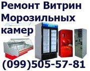 Ремонт морозильных камер Краматорск,  Константиновка,  Дружковка