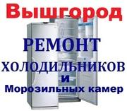 Морозильная камера,  РЕМОНТ Холодильников на дому 0508451294. Вышгород